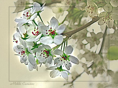 Artsy Cherry Blossoms by Mikki Cucuzzo