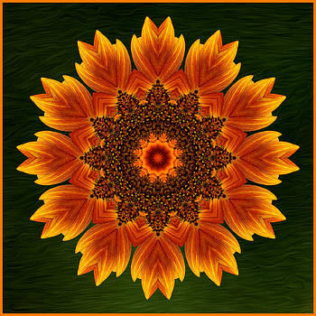 Artsy Sunflower Kaleidoscope by Liz Mackney