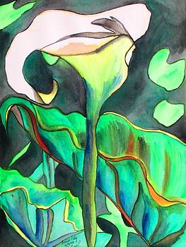 Arum Lily by Sacha Grossel