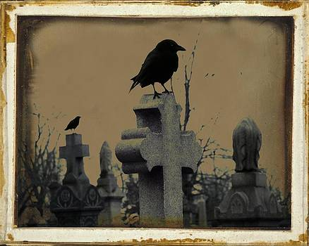 Gothicrow Images - Dark Aged Crow Graveyard