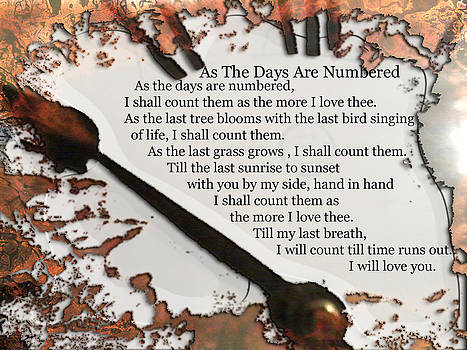 As The Days Are Numbered by Lisa  Griffin and Gerry Griffin