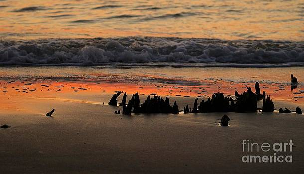 As The Waves Roll In by Adam Dowling
