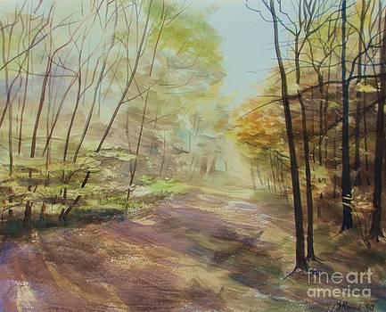 Martin Howard - Ashridge Woods