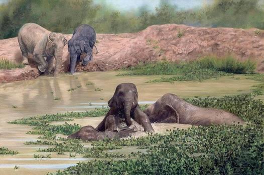 Asian Elephants - In support of Boon Lott's Elephant Sanctuary by Rachel Stribbling