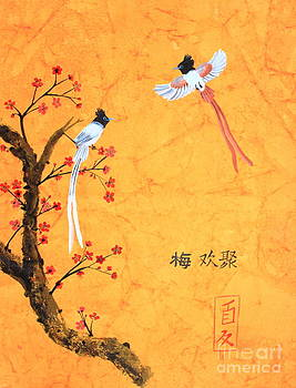 Asian Paradise flycatcher on Plum Blossoms by Greeshma Manari