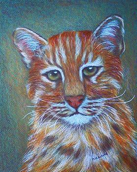 Margaret Saheed - Asiatic Golden Cat