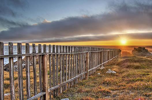 Asilomar Fence by John Roth