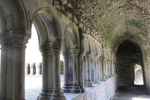 Askeaton Friary by Carrie Todd
