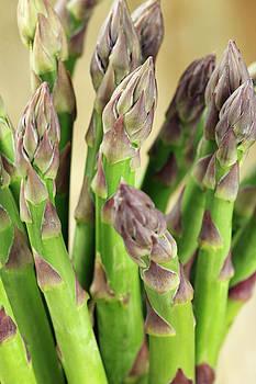 Asparagus by Jelena Vasjunina