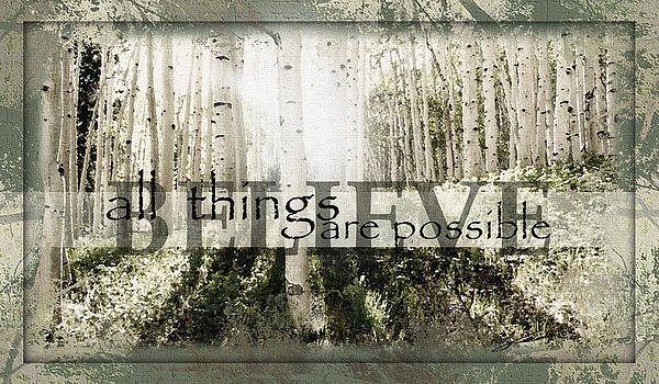 Aspen All Things Are Possible by Sabrina Farmer