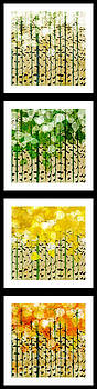 Andee Design - Aspen Colorado Abstract Vertical 4 In 1 Collection