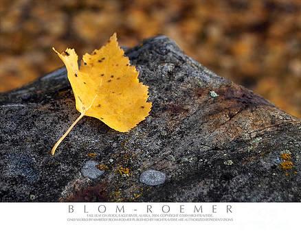 Aspen Leaf on Rock by Kimberly Blom-Roemer