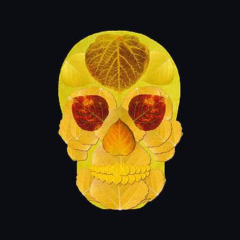 Aspen Leaf Skull 1 Black by Agustin Goba