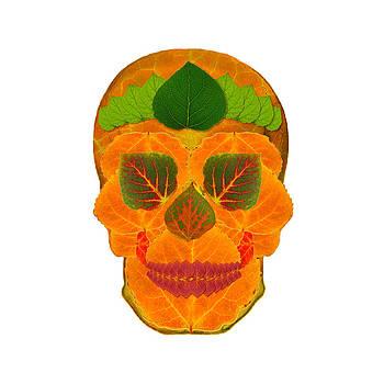 Aspen Leaf Skull 3 by Agustin Goba