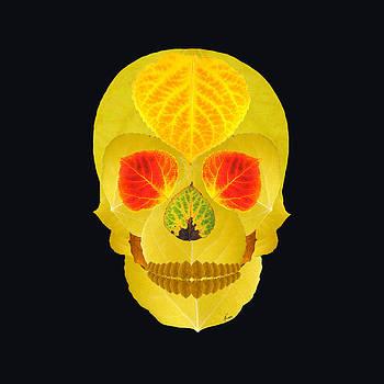 Aspen Leaf Skull 4 Black by Agustin Goba