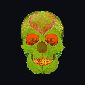 Aspen Leaf Skull 5 Black by Agustin Goba