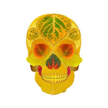 Aspen Leaf Skull 7 by Agustin Goba