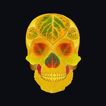 Aspen Leaf Skull 7 Black by Agustin Goba