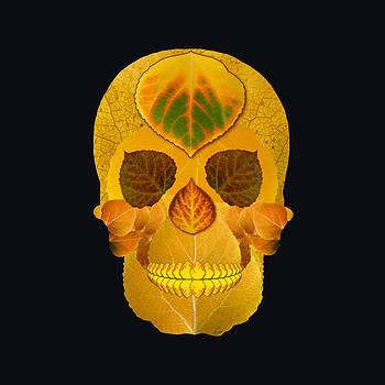 Aspen Leaf Skull 8 Black by Agustin Goba