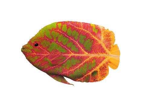 Aspen Leaf Tropical Fish 1 by Agustin Goba
