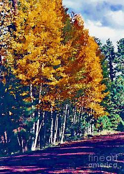 Aspen Road  by Juls Adams