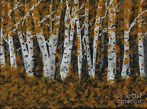 Aspen trees Ablaze by Gail Matthews