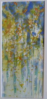 Aspens framed by Phoenix Simpson