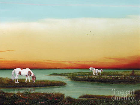 Assateague Island Sunset by Albert Puskaric