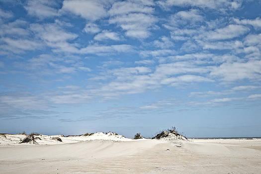 Assateague National Park Dunes by Frank Morales Jr