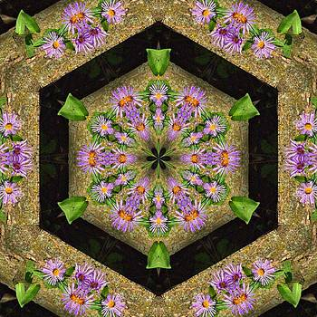Valerie Kirkwood - Asters on Wood Kaleidoscope