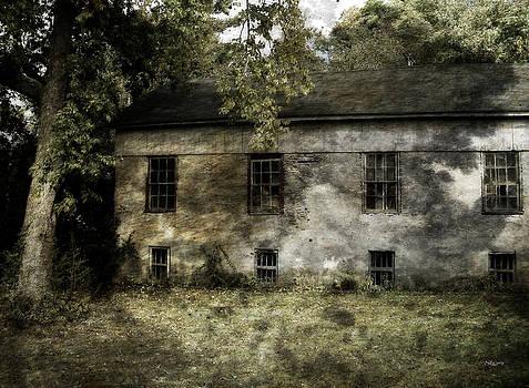 Asylum by Cynthia Lassiter