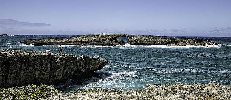 At Kualoa Point by Joanna Madloch
