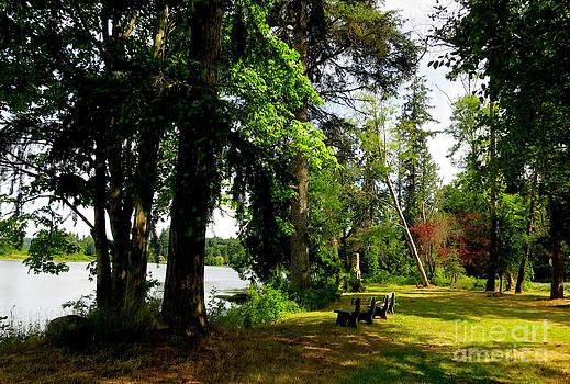 At The Lake On Bainbridge Island by Tanya  Searcy