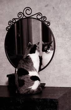 At the mirror by Laura Melis