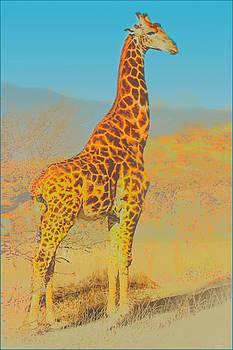 At the Zoo - Giraffe by Douglas MooreZart
