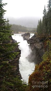 Gail Matthews - Athabasca Falls on Foggy Day