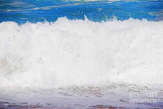 Atlantic Ocean Wave by Luis Alvarenga