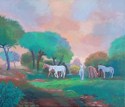 Atlar by Yavuz Saracoglu