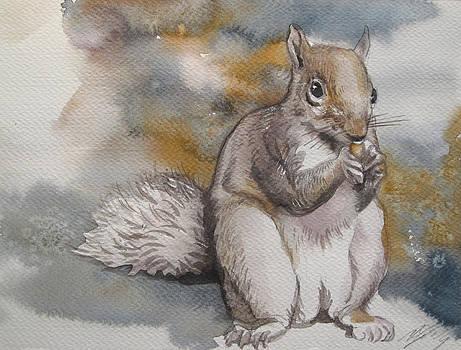 Alfred Ng - atuumn squirrel