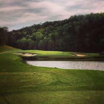 Aunt Bday Choice: A Round Of Golf! by Trey Jackson