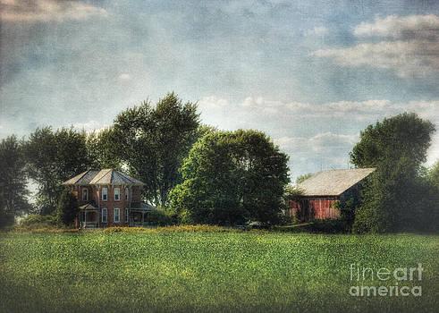 Aunt Clementine's House by Pamela Baker