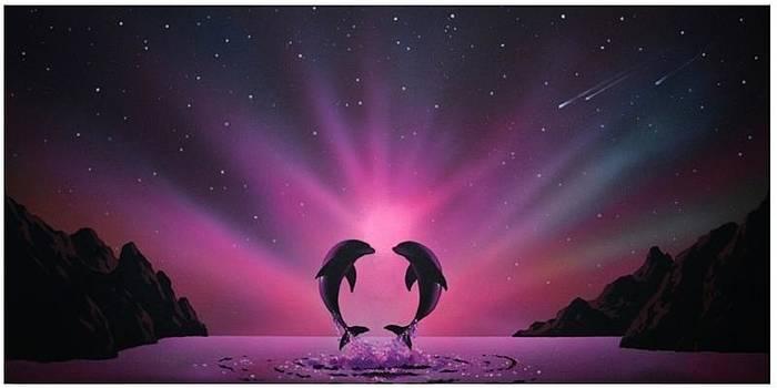 Aurora Borealis Dolphins  by Nikola Peranovic