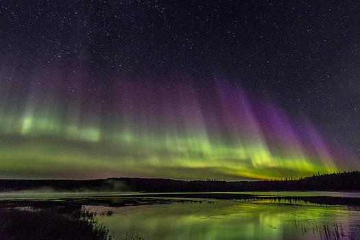 Aurora Wave by Valerie Pond