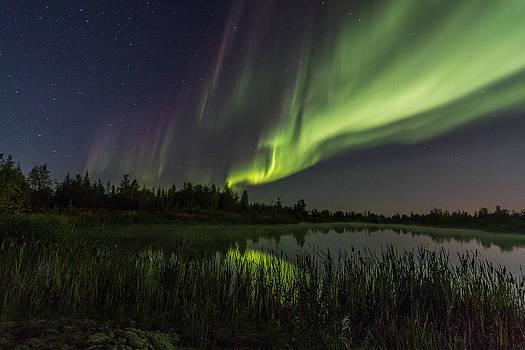 Aurora Waves by Valerie Pond