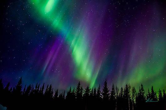 Auroras Blaze by Steve  Milner