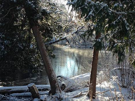 AuSable River/Grayling MI by Pat Thompson