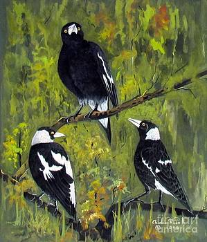 Australian Magpies by Audrey Russill