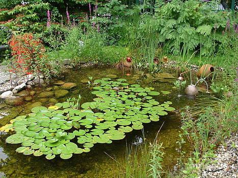 Danielle Groenen - Austrian Pond