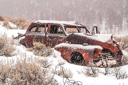 Auto in Snowstorm by Sue Smith