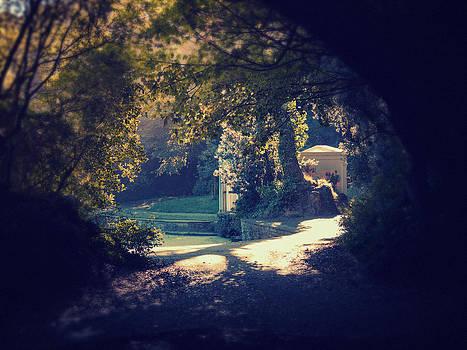 Autumn 2 by Patrick Horgan